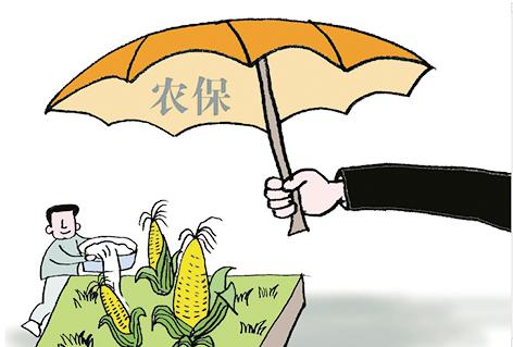 """""""保险+期货""""支农惠农范围明显扩大"""