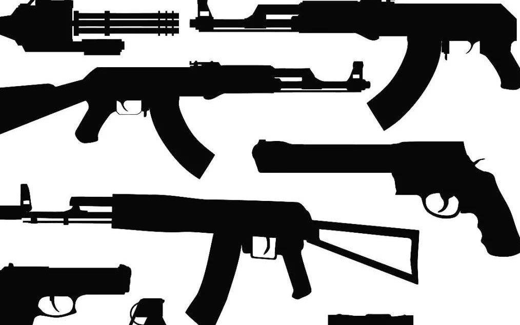 我市组织收看 打击整治枪支爆炸品 违法犯罪部际联席会议 第二次全体会议