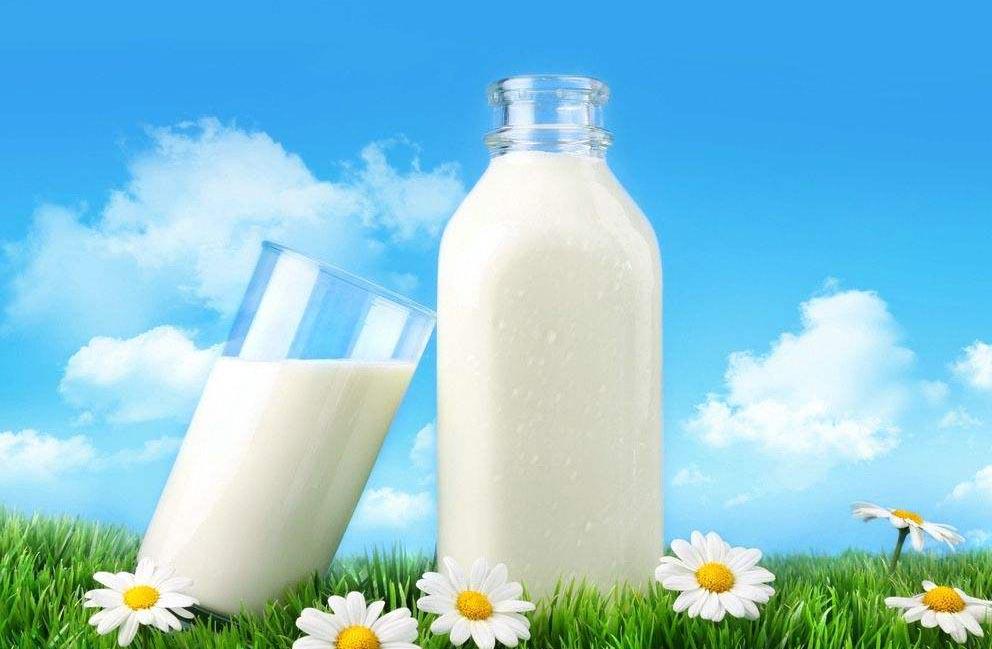 6个喝牛奶的常识 你得懂